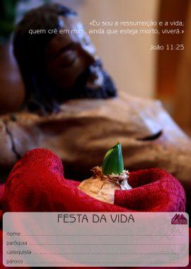 8—Festa-da-Vida(1)-1