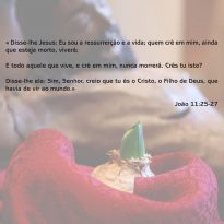 Festa da Vida – Diocese de Vila Real – Verso