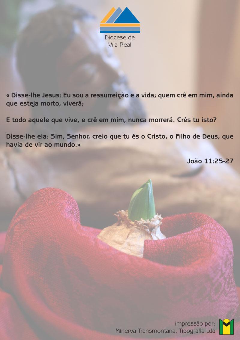 8—Festa-da-Vida(1)-2